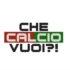 Lega Pro Girone B Pordenone-Ternana, il commento con 'Che calcio vuoi?'