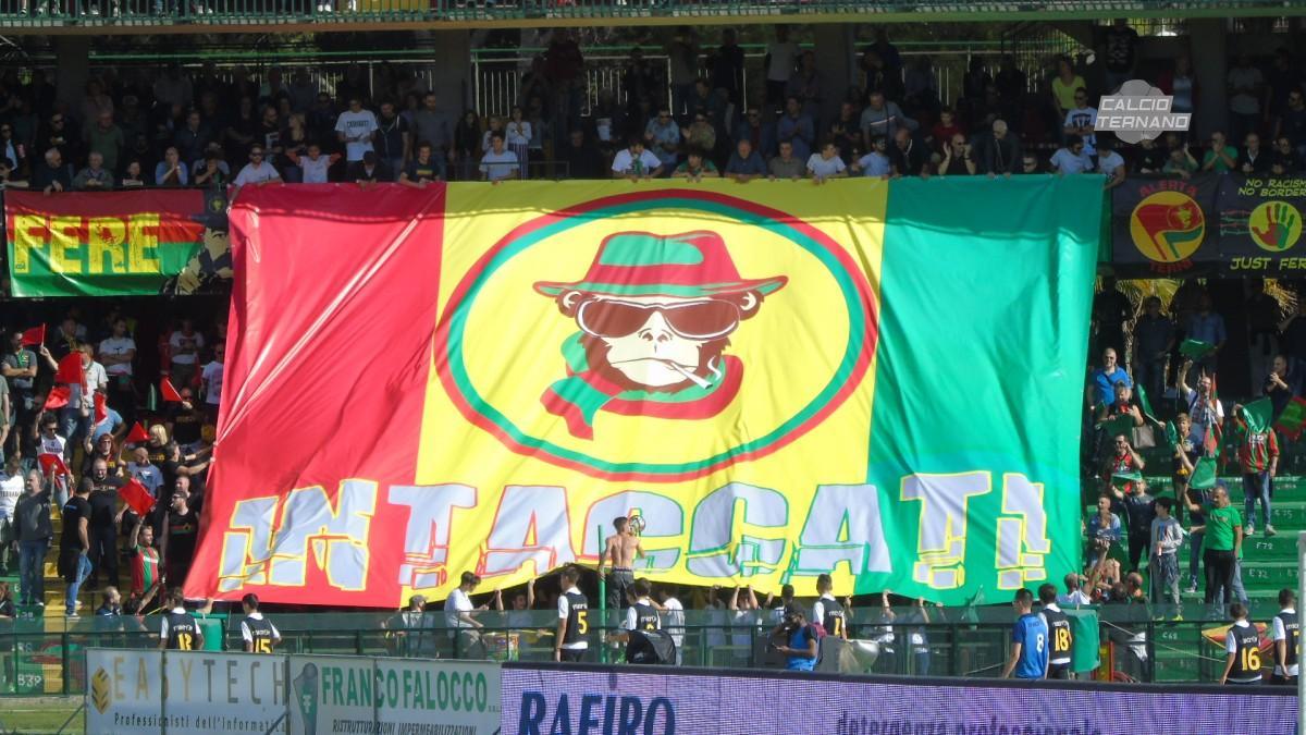 Ternana-Catania, il dato spettatori della sfida